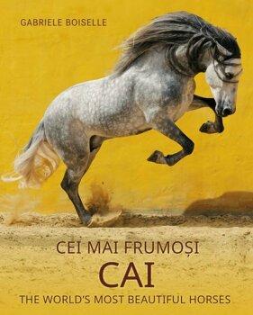 Cei mai frumosi cai/***