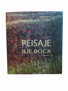 Peisaje Ilie Boca/Georgeta Djordjevic